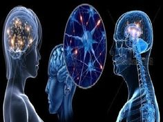 ▶ José María Rodríguez Delgado. Pasión por las posibilidades del cerebro humano - YouTube