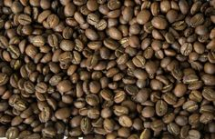 Brazilian scientists have discovered a protein in coffee that has effects similar to pain reliever morphine, researchers at the state University of Brasilia (UnB) and state-owned Brazilian Agricultural Research Corporation Embrapa said Saturday.