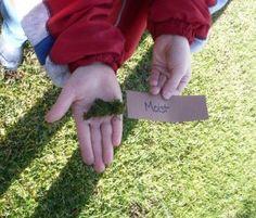 Sensory Walk: A Sense of Touch Activity Sensory Activities For Preschoolers, Space Activities For Kids, Senses Activities, Nature Activities, Spring Activities, Science Activities, Science Projects, Preschool Activities, Outdoor Activities