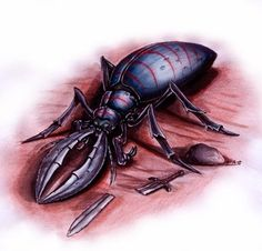 Kamikiri (Japanese) - These are early-game beetle monsters that love to cut things in half.  They have the strangest diet of all creatures, they enjoy eating the hairs of other creatures. Their mandibles are very strong and can cut through steel with ease.