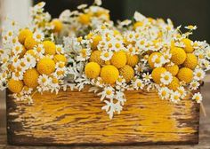 These yellow and white flowers in a rustic wooden box painted yellow ooze happiness. Perfect centerpiece for a summer/bumble bee themed wedding.