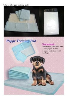Pet Training Wee Wee Floor Protection and Training Pads 24 X 24 100pcs >>> Visit the image link more details.(This is an Amazon affiliate link and I receive a commission for the sales)