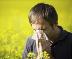 Allergy relievers require small changes in your daily routine.