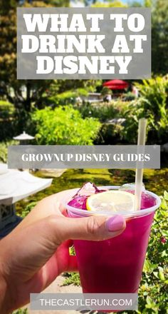for Adults: The best Disney alcoholic drinks - Iconic Walt Disney World Drinks for your Grownup Disney Vacation - Disney Vacation Planning - Disney Food and Drinks - Disney Tips and Tricks - Disney World Honeymoon, Disney World Vacation Planning, Walt Disney World Vacations, Disney Resorts, Disney Planning, Disney Parks, Disney Travel, Trip Planning, Disney World Tips And Tricks