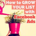 Facebook Ads Case Study: How to Grow Your Email Signups