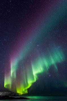 Short trip to Lofoten islands, Norway, in winter: Many shots of northern lights