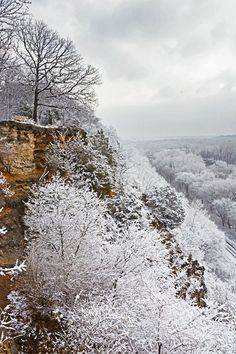 It's looking like we might have a white Christmas this year. First snow of the season on the bluffs in Castlewood State Park.