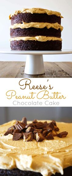 Reese's Peanut Butter Chocolate Cake! A rich and delicious chocolate cake with a whipped peanut butter frosting and mini Reese's peanut butter cups. | livforcake.com via @livforcake
