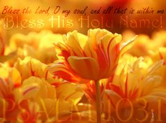 """Psalm 103:1 - """" Bless the Lord, O my soul, and all that is within me. Bless His Holy Name! """""""