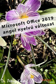 office_2019_angol Microsoft Office, Books, Plants, Livros, Book, Planters, Libros, Book Illustrations, Plant