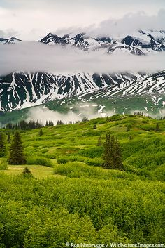 ✯ Tatshenshini-Alsek Wilderness Provincial Park along the Haines Highway…