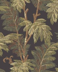 Found it at Wayfair - Tommy Bahama Archival Palm Tree Unpasted Wallpaper Textured Wallpaper, Wall Wallpaper, Pattern Wallpaper, Tropical Design, Tropical Decor, Palm Tree Print, Palm Trees, British Colonial Style, Tropical Wallpaper