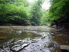 Pine Hills Nature Preserve, rural Montgomery Co., Indiana.