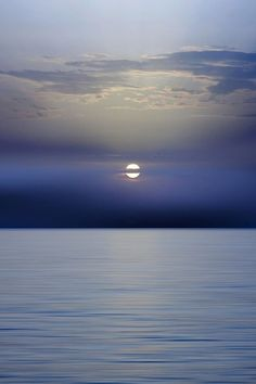 """"""" Blue !!! By Photographer """""""