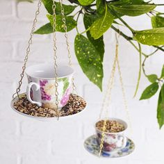 Dainty teacup bird feeder!  What a gorgeous addition this would be to any garden #birds #teacup #garden