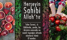 Herşeyin Sahibi Allah'tır – Allah'a Hizmet