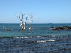 Nosy Be - Andilana Beach