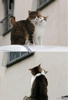 I want to kiss you!  lololo