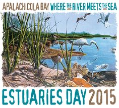 Estuaries Day at the Reserve this year attracted over 600 visitors to the center.