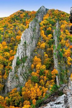 Tuscarora quartzite fins, Nelson Rocks, Pendleton County, West Virginia