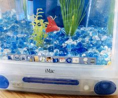 Breathe new life into obsolete technology by moving your pet fish into the recycled iMac Aquarium. While the bulky design doesn't quite cut it on the technological front anymore, it makes a unique and spacious pad that your little fish friend will absolutely love.