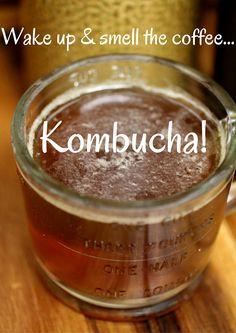 Coffee Kombucha