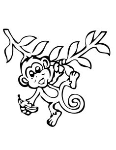 Monkey Coloring Pages | At the Zoo Children\'s Ministry Curriculum ...