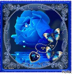 See the PicMix Blue rose. belonging to StellaStai on PicMix. Beautiful Flowers Images, Beautiful Words Of Love, Beautiful Fantasy Art, Beautiful Moon, Flower Images, Beautiful Roses, Flower Art, Blue Roses Wallpaper, Heart Wallpaper