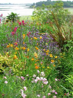 Jardins en fleurs sur l'Ile-Aux-Moines - Golfe du Morbihan.  Brittany