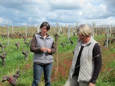 Albane and Pascale Bervas - Daughter / mother team discussing the recovery of the 55 yo Merlot vines in Hourcat Centre.
