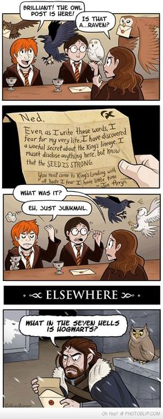 Harry Potter Junk Mail