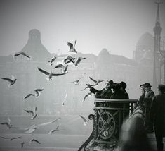 I like this photo by Robert Capa becuase the birsd look like they're flying from the main subject. I also like how they used the rule of thirds. Henri Cartier Bresson, War Photography, Vintage Photography, Street Photography, Landscape Photography, Fashion Photography, Wedding Photography, Magnum Photos, Omaha Beach