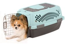 Petmate Pet Taxi Fashion Kennel (Small/Blue Air/Coffee). Carrier, Crate, Transporting, Travel * Click image to review more details.
