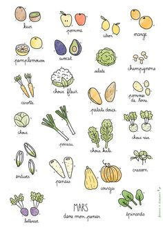 Discover recipes, home ideas, style inspiration and other ideas to try. Cooks Illustrated Recipes, Garden Journal, Sketch Notes, Fruit And Veg, Bullet Journal Inspiration, Food Illustrations, Food Design, Food Art, Doodles