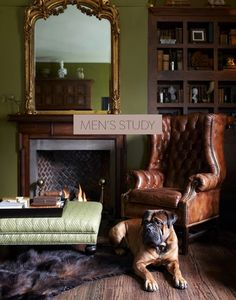 Modern English Country Decor Ideas For Living Room - Zigarren Lounges, Style Anglais, English Country Style, Home Libraries, Man Room, Green Rooms, Family Room, Room Decor, House Design