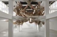 Henrique Oliveira. Baitogogo | Palais de Tokyo, centre d'art contemporain