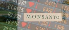 monsanto-profits-15-percent