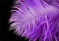 Lilac Ostrich Feather