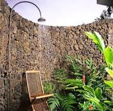 For some strange reason, I have this obsession with the idea of an outside shower in my back yard with lots of tropical plants surrounding me.  It might have something to do with the naked man shower scene in Sex and the City the movie, but I can't even recall if he really WAS in an outdoor shower or not... well, I guess for some reason in my mind he was.  ;)