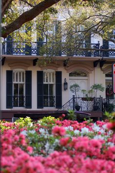"""Savannah~fabulous architecture and azaleas"". She is right, they are blooming everywhere right now!"