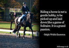 Riding a horse is not a gentle hobby.. Horse Quotes