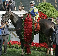 2007 Kentucky Derby Winner Street Sense