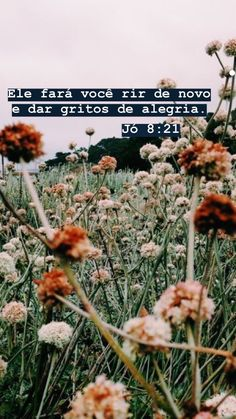 Rosa Menezes's media content and analytics Jesus Is Life, My Jesus, Jesus Christ, Jesus Wallpaper, Tumblr Wallpaper, God Is Amazing, God Is Good, Story Instagram, Jesus Freak