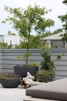 roof deck planters | General Roofing Systems Canada (GRS) | Roofing Calgary, Red Deer, Edmonton, Fort McMurray, Lloydminster, Saskatoon, Regina, Medicine Hat, Lethbridge, Canmore, Cranbrook, Kelowna, Vancouver, BC, Alberta, Saskatchewan www.grscanadainc.com 1.877.497.3528