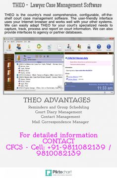 THEO is the country's most comprehensive, configurable, off-the-shelf court case management software. The user-friendly interface uses your Internet browser and works well with your other systems. We can easily adapt THEO for your court's specialized needs to capture, track, process and report on court information. We can also provide interfaces to agency or partner databases.