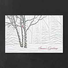 Serene View Snowy Nature Christmas Cards http://partyblock.carlsoncraft.com/Holiday/Seasons-Greetings-Cards/YU-YUP98381-Serene-View.pro