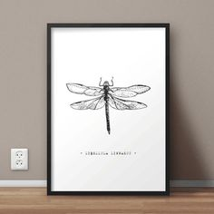 Libellula Linnaeus Printable Wall Art  Dragonfly by QuoteArtShop