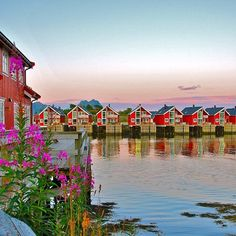 Magical Lofoten Islands, Svolvaer, Norway; stay in a fishermen's cabin and stay up all night watching the midnight sun