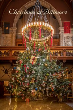Celebrate Christmas with beloved traditions in unsurpassed style. Biltmore presents daytime and evening experiences inspired by a century of festivities, highlighted with decorated trees by the dozens and garlands and lights measured by the mile.