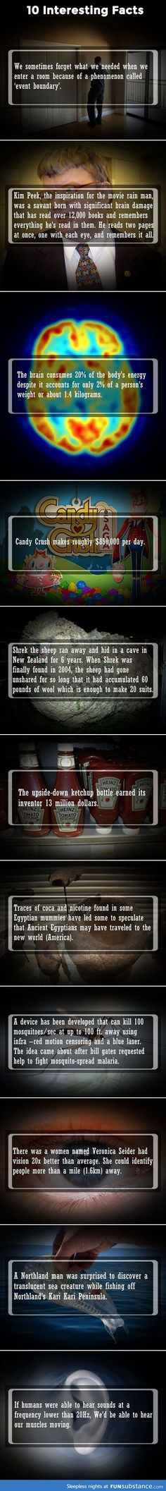 Ten Interesting Facts To Impress Your Friends...